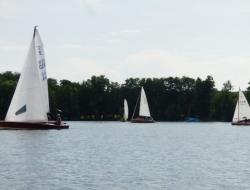 Holzbootregatta 2015 14.jpg
